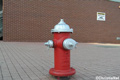 Free Fire Hydrant Photo